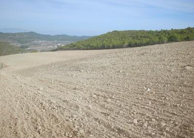 Millora agrícola i bassa per reg a Can Oliver