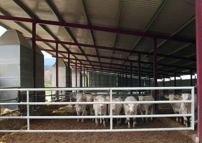 Edificacions ramaderes