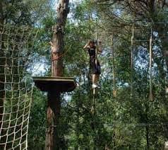 Parc d'aventures dalt dels arbres